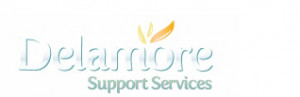 Delamore Support Servicesedit 696x130 Copy